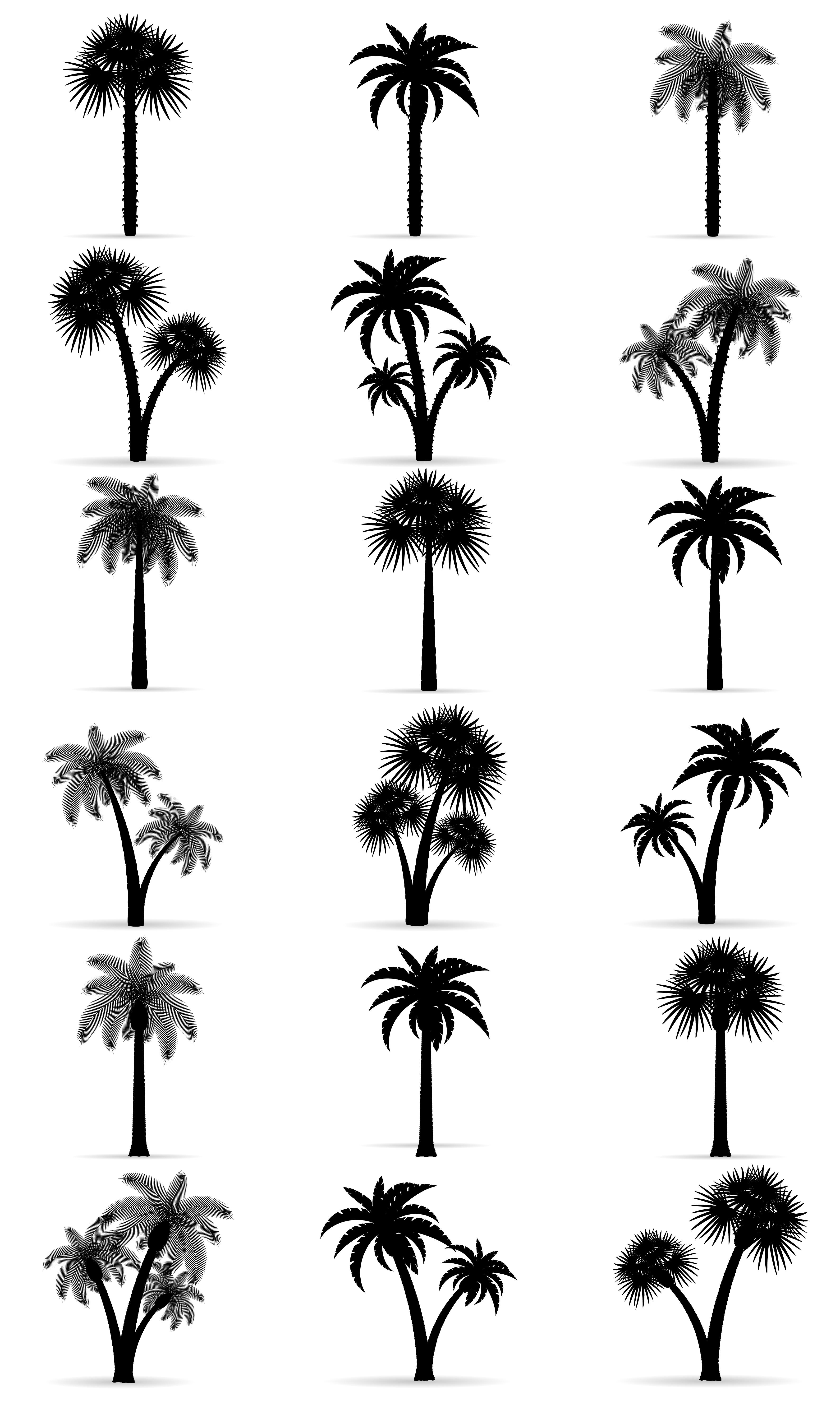 palm tree outline palm tree black outline silhouette stock vector outline tree palm