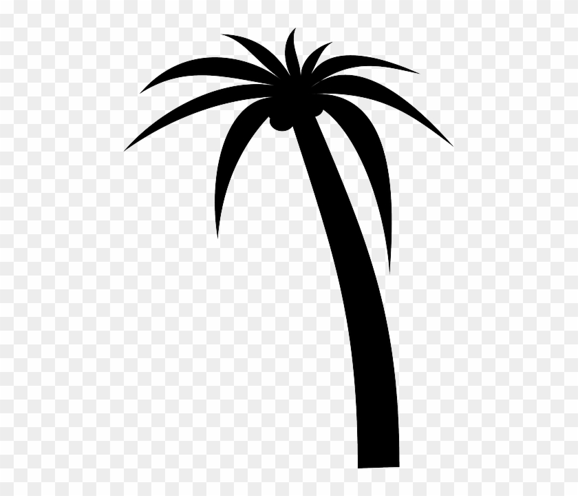 palm tree outline palm tree black outline silhouette vector illustration outline tree palm