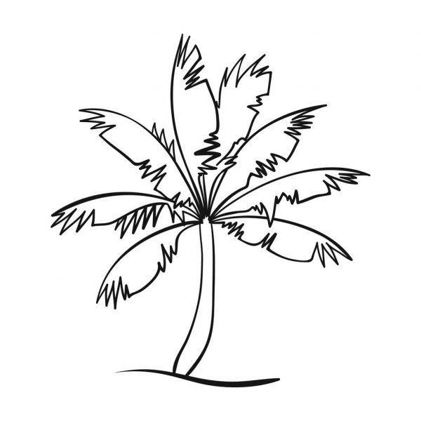 palm tree outline palm tree black outline silhouette vector illustration tree outline palm