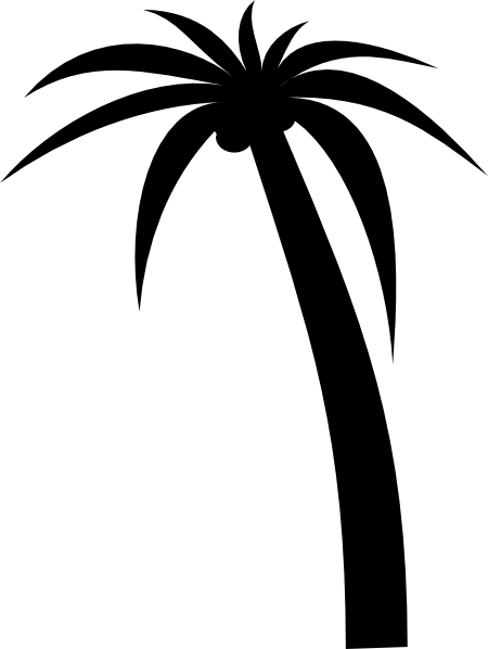 palm tree outline palm tree drawing outline free download on clipartmag tree palm outline