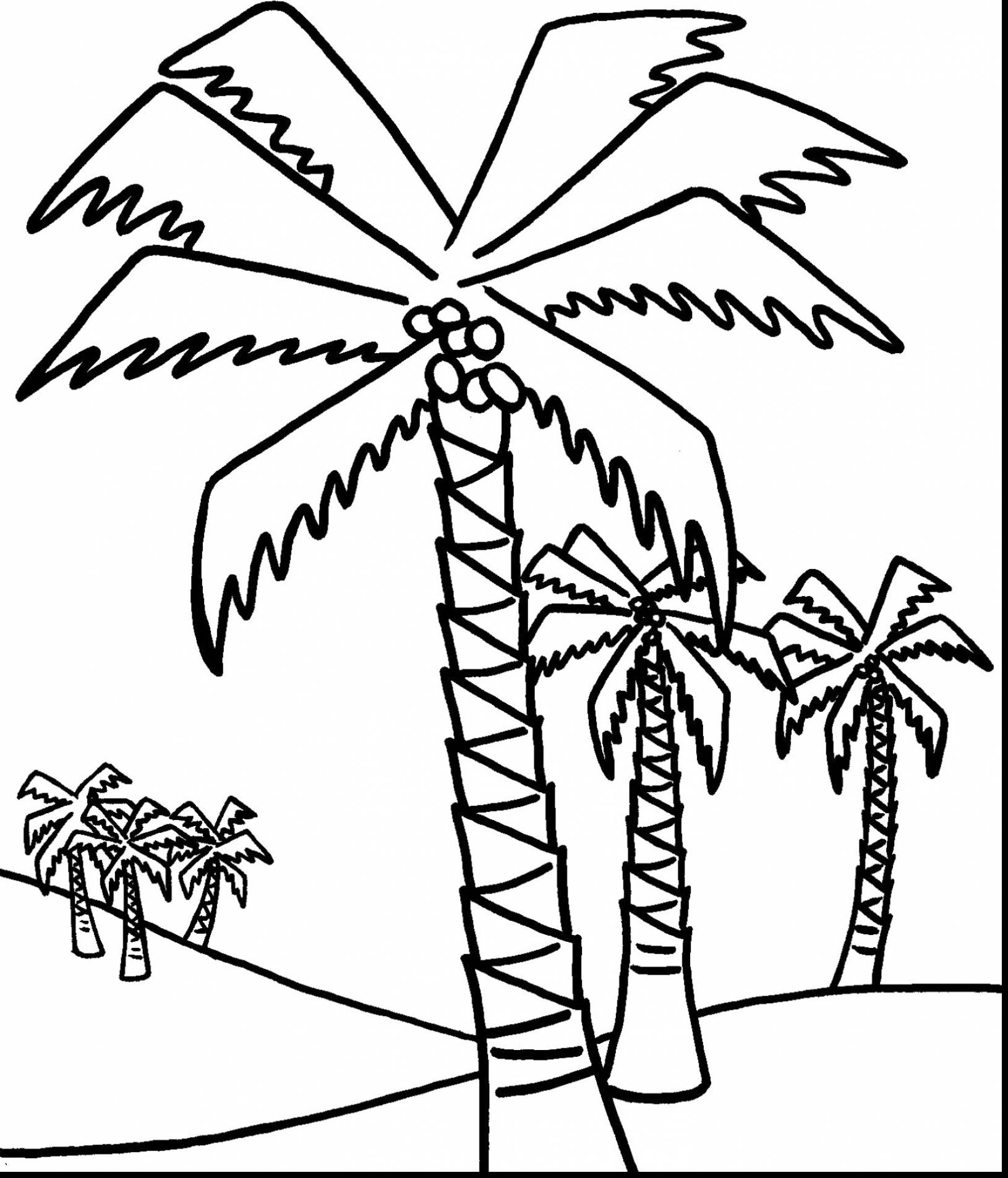 palm tree outline palm tree outline clipart best palm tree outline