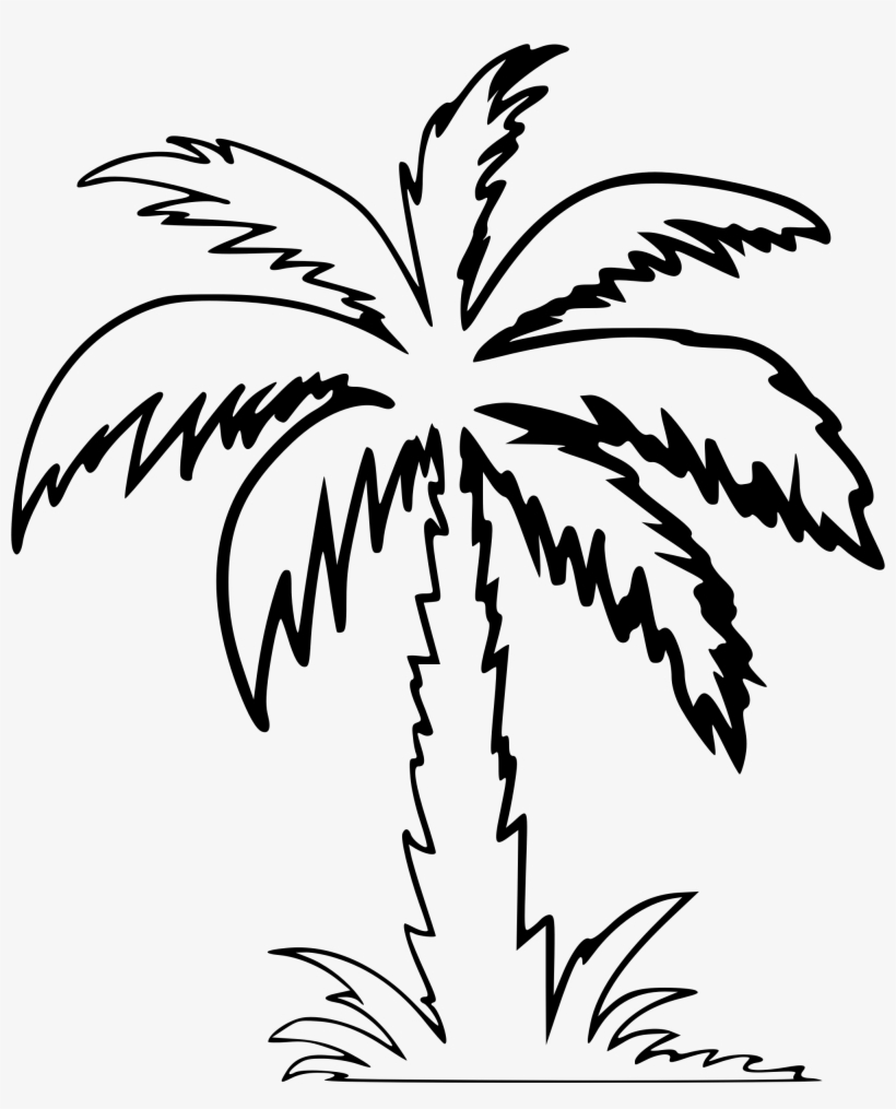 palm tree outline palm tree outline stock illustration download image now outline tree palm