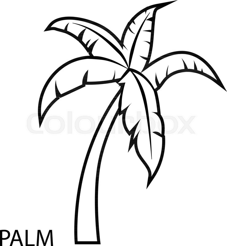 palm tree outline palm tree shape stock vector baavli 64244583 palm outline tree