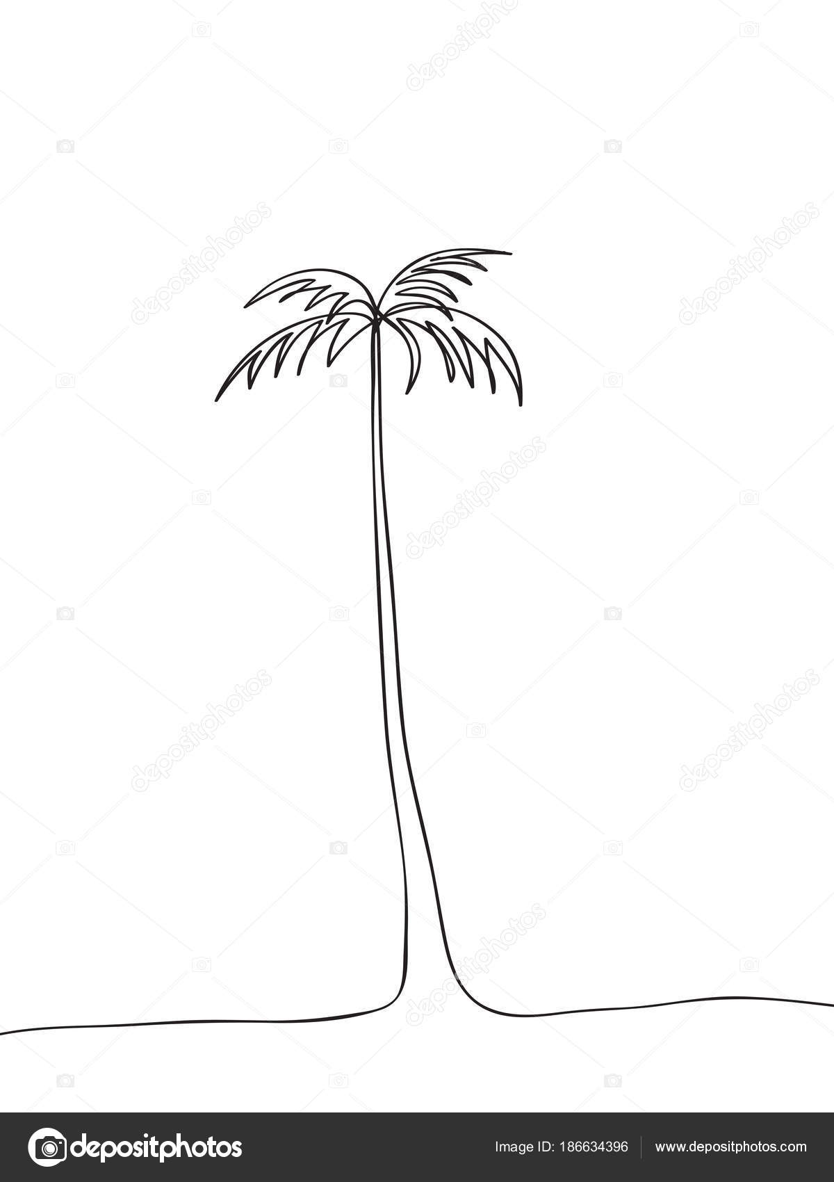 palm tree outline palm trees outline vector set stock illustration palm tree outline