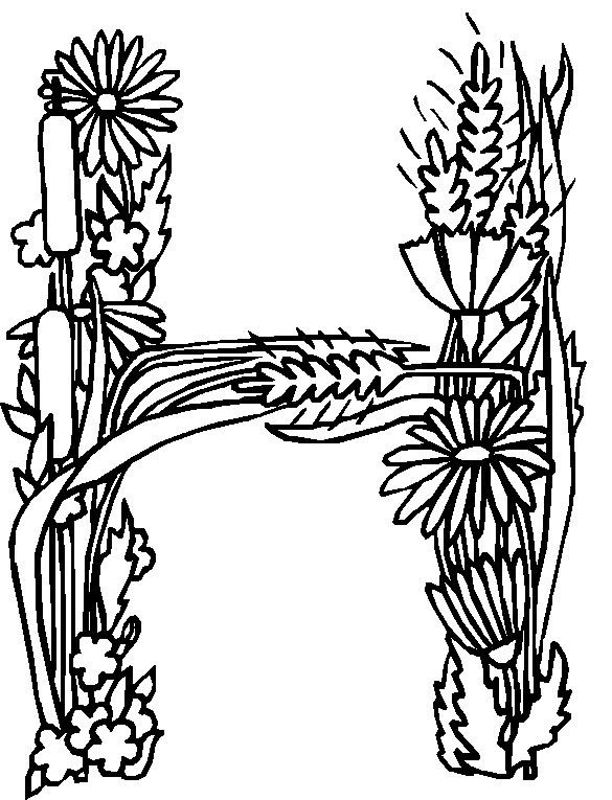 4 h coloring sheets 4 h coloring pages coloring home coloring 4 h sheets