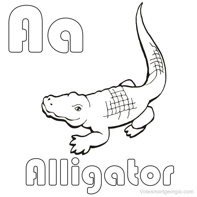 a for alligator coloring page 10 best free printable alligator coloring pages for kids page coloring alligator for a