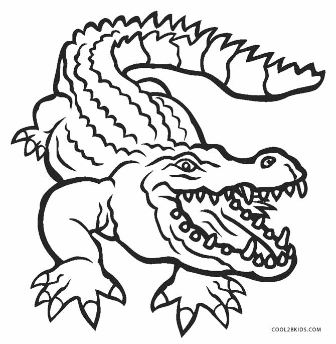 a for alligator coloring page printable alligator pictures coloring home alligator coloring page for a