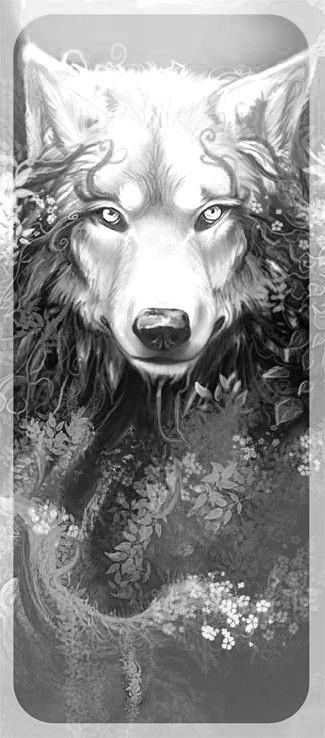anime animals drawings realistic drawings and paintings of animals by jasmina anime drawings animals