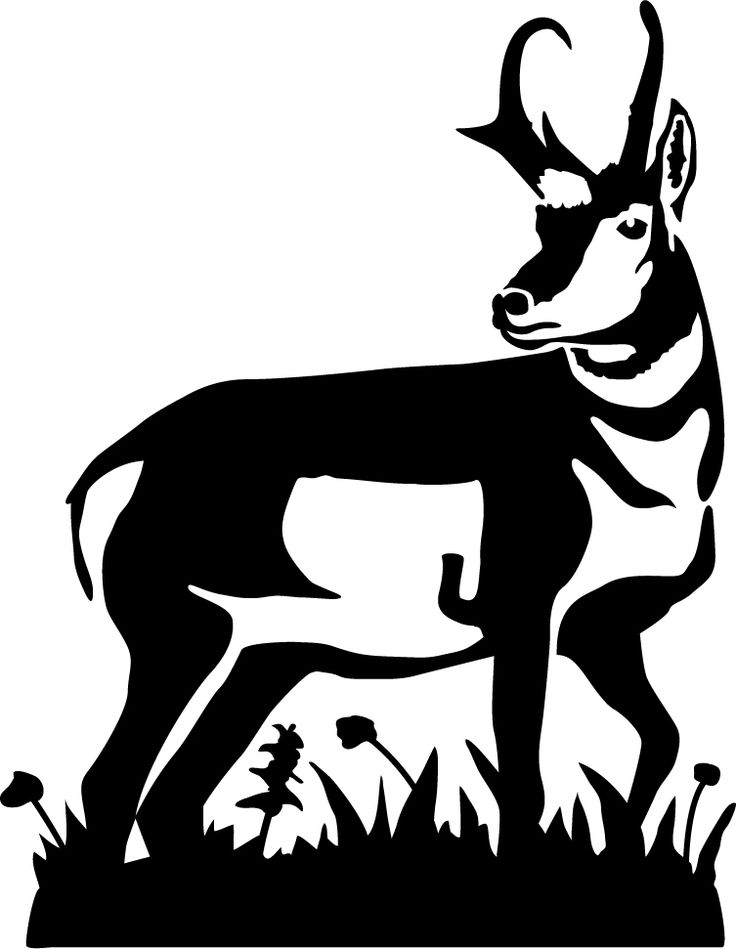 antelope silhouette pronghorn silhouette at getdrawings free download silhouette antelope