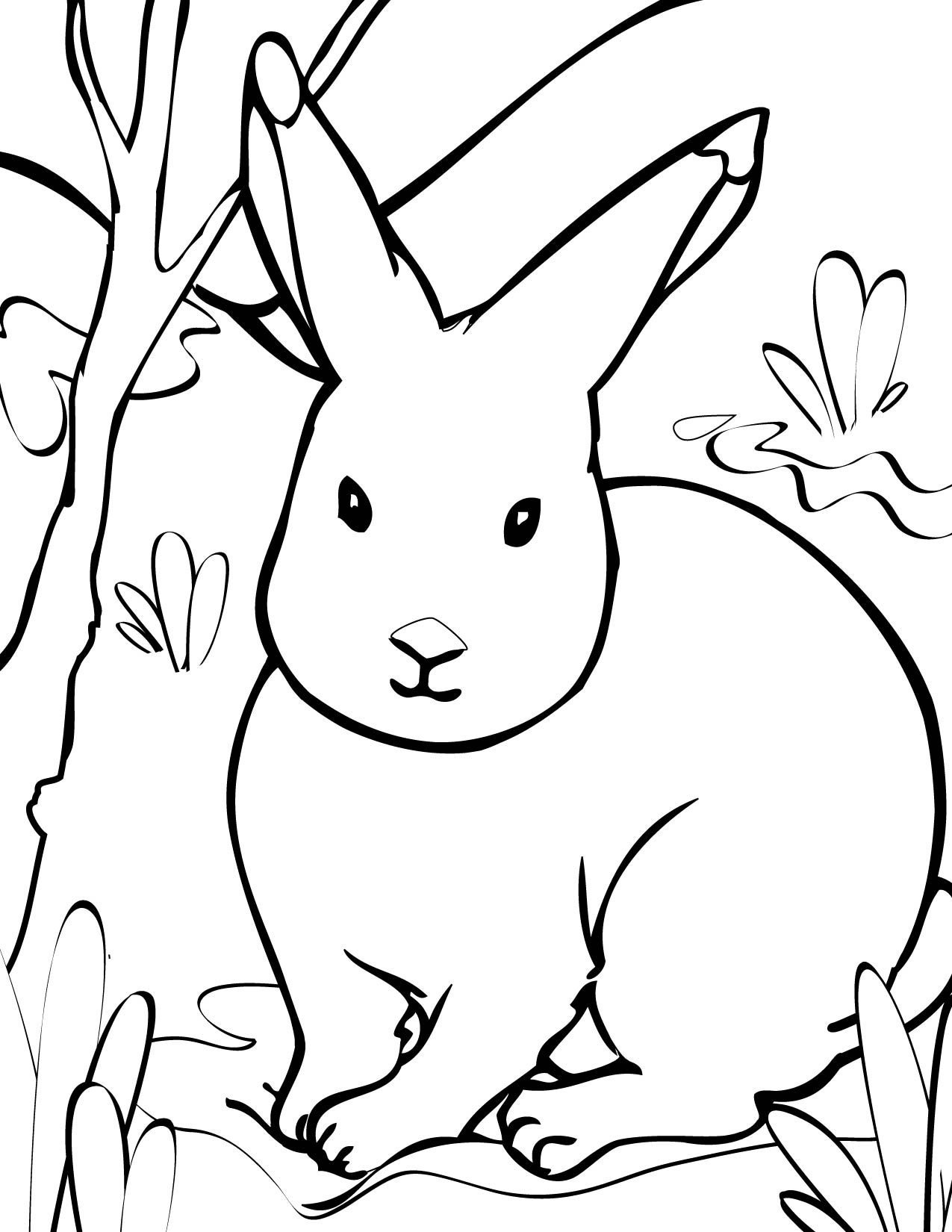 arctic animal coloring pages tundra animals drawing at getdrawings free download arctic pages animal coloring