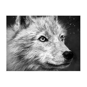 arctic wolf drawing arctic wolf drawing by sharlena wood drawing wolf arctic