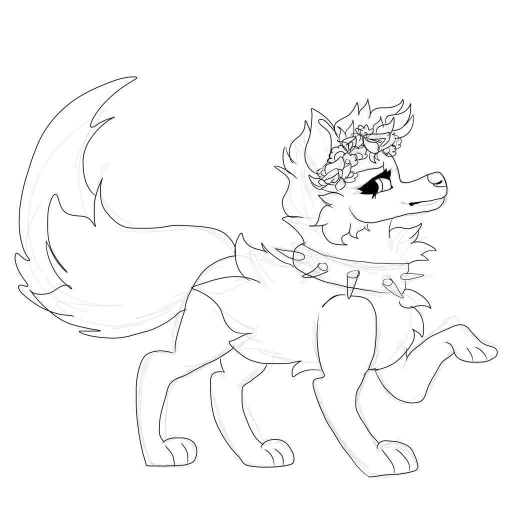 arctic wolf drawing wolf drawings png free wolf drawingspng transparent drawing arctic wolf