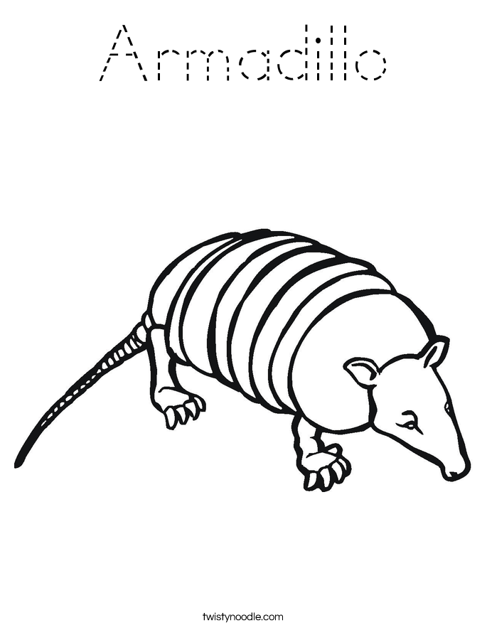 armadillo coloring page armadillo coloring pages 030 kids time fun places to page armadillo coloring
