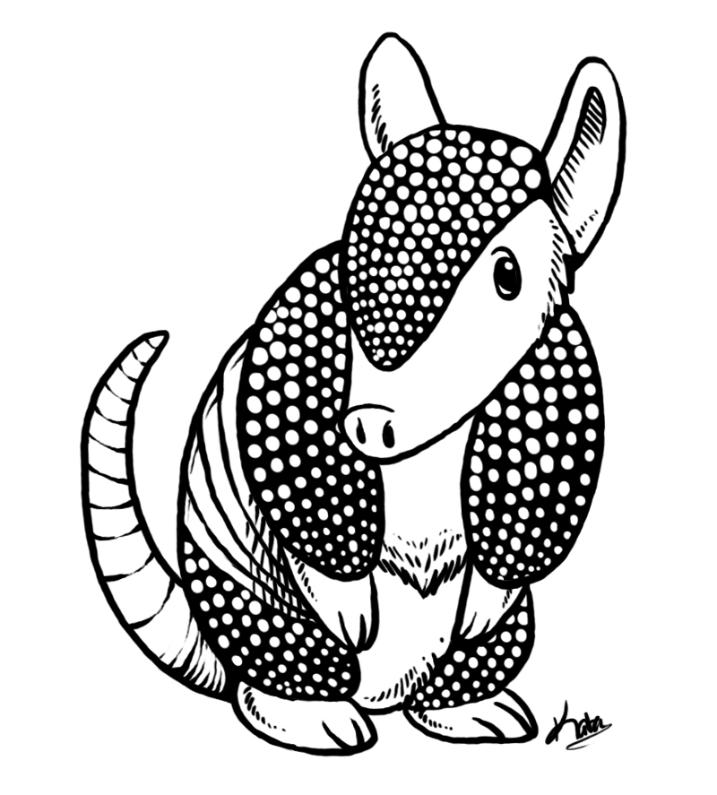 armadillo drawing endless scales here39s my finished nine banded long nosed drawing armadillo