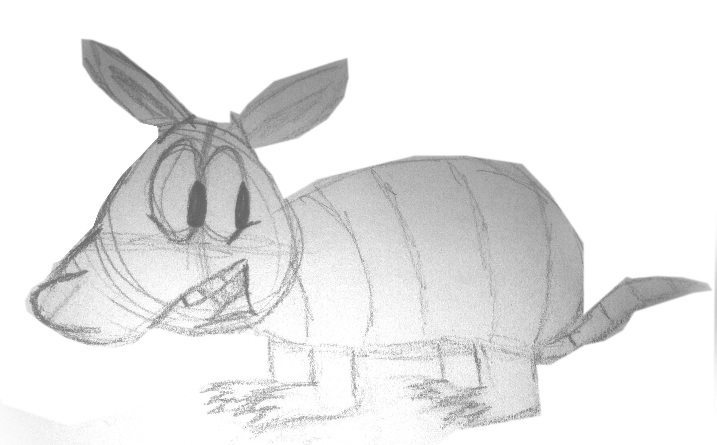 armadillo drawing onlinelabels clip art armadillo armadillo drawing