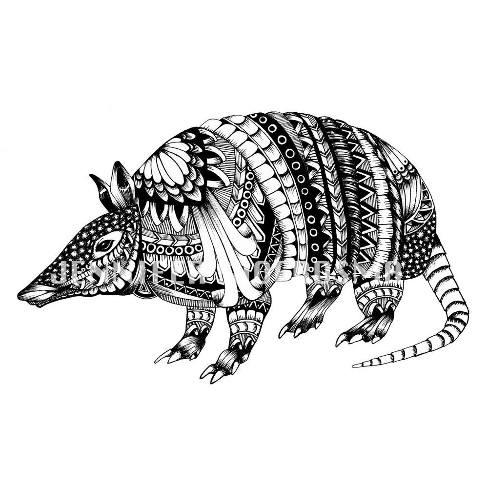 armadillo drawing vintage illustrations of yellow armadillo download free drawing armadillo