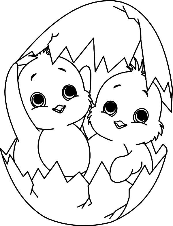 baby chick coloring page baby chick a happy little baby chick coloring page baby baby coloring page chick