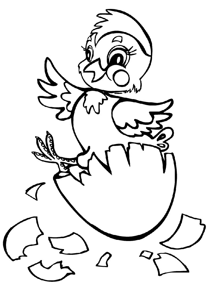 baby chick coloring page baby chick coloring pages download and print baby chick baby chick coloring page