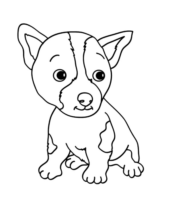 baby dog coloring pages netart 1 place for coloring for kids part 7 dog pages coloring baby
