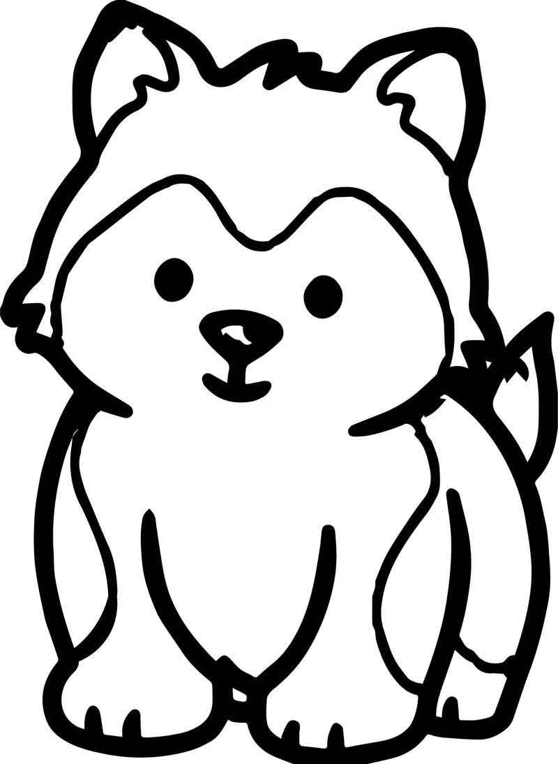 baby husky coloring pages baby husky coloring coloring pages baby husky pages coloring