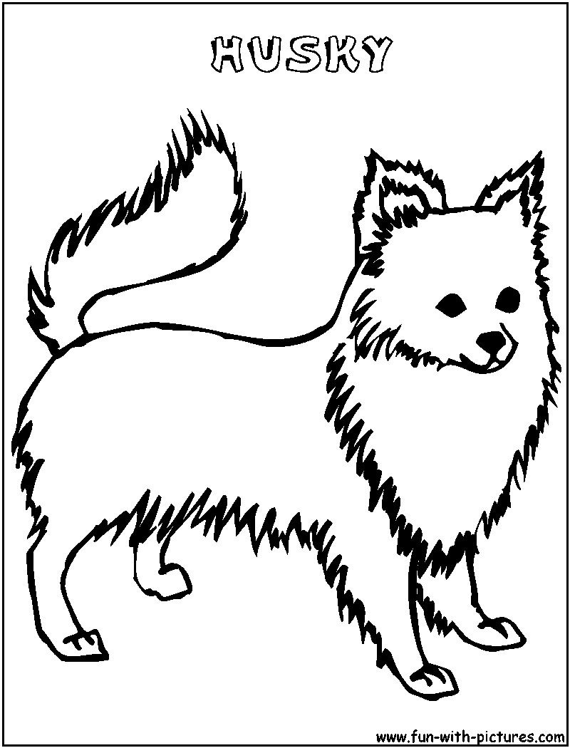 baby husky coloring pages baby husky coloring coloring pages coloring husky baby pages