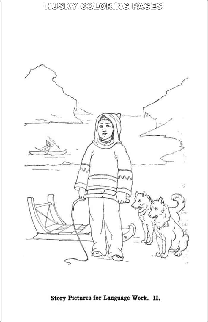 baby husky coloring pages collection of fantastic husky coloring pages stpetefestorg husky coloring pages baby