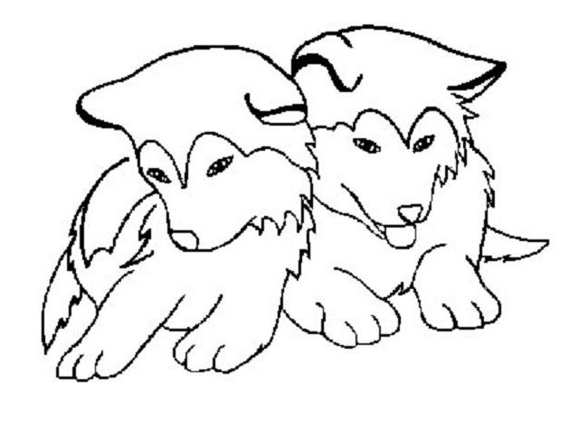 baby husky coloring pages cute baby husky pages coloring pages coloring husky pages baby