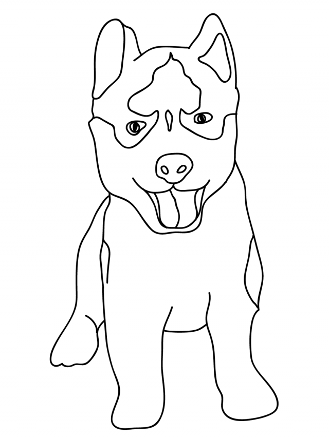 baby husky coloring pages siberian husky coloring pages coloring home pages baby coloring husky
