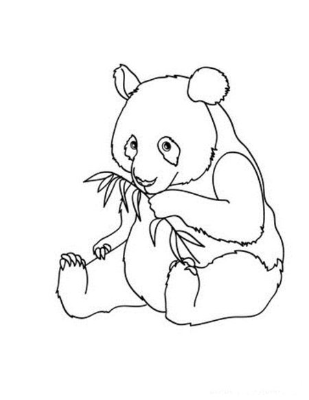 baby panda coloring pages baby panda coloring pages printable coloring pages baby coloring panda pages