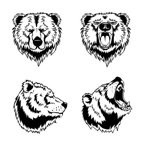 bear face drawing bear face drawing bear drawing face