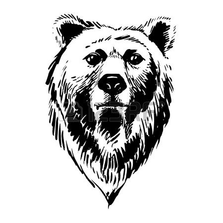 bear face drawing cute bear face print out drawing face drawing bear