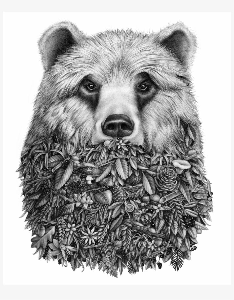 bear face drawing sketchy bear by angel mae art bear skull skull art bear drawing face
