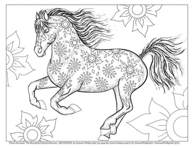 beautiful horse coloring pages 1736 best images about quotart is the proper task of life horse coloring pages beautiful