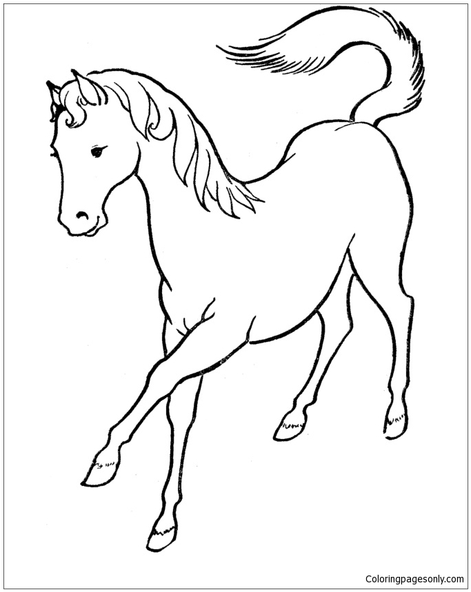 beautiful horse coloring pages free printable horse coloring pages for adults coloring home pages coloring beautiful horse