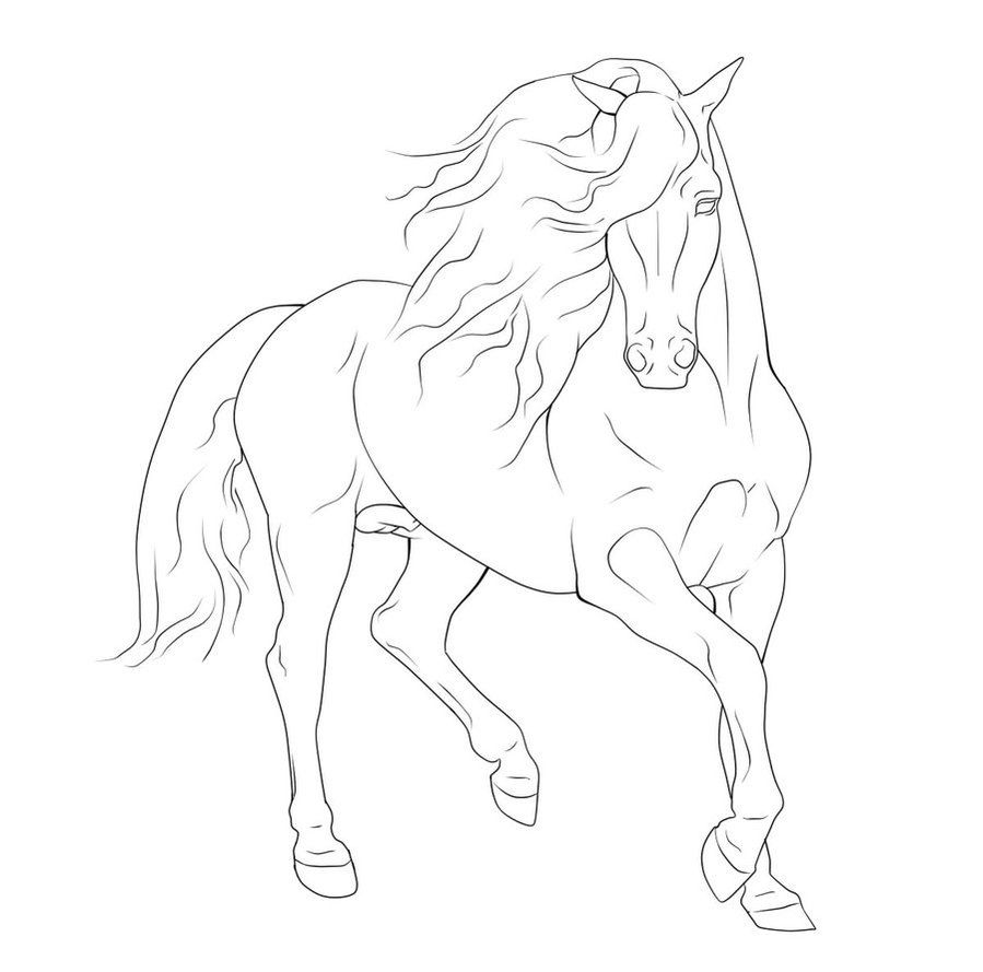 beautiful horse coloring pages gaited horse lineart google search horse coloring coloring pages horse beautiful
