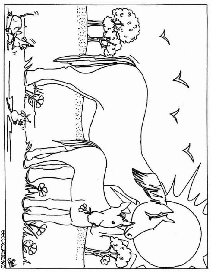 beautiful horse coloring pages horse coloring pages mare and foal beautiful coloring horse pages
