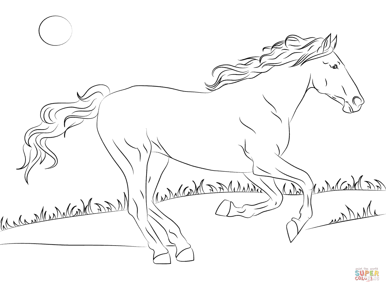 beautiful horse coloring pages new downloadable 14 page adult coloring book full of pages beautiful coloring horse