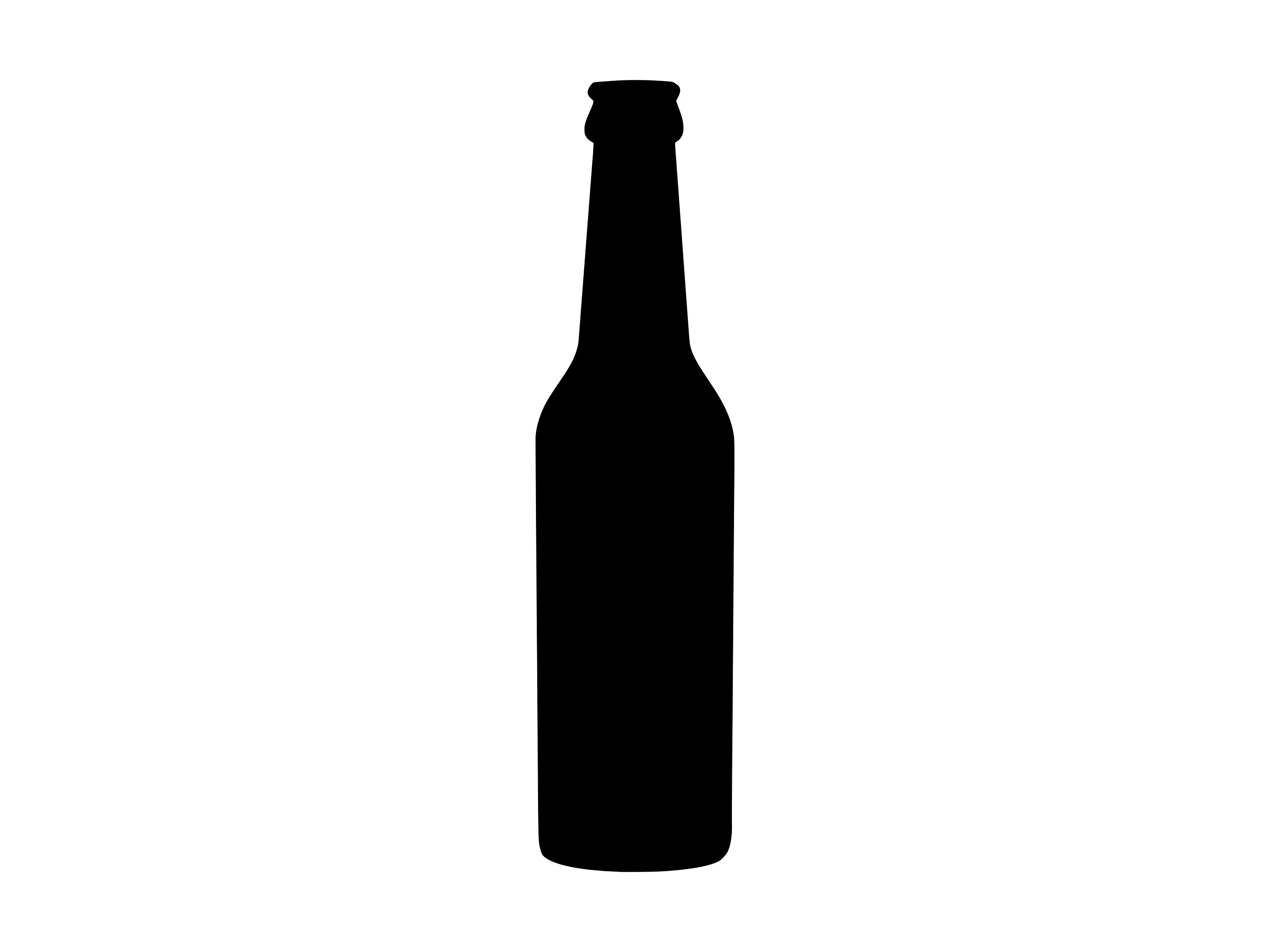 beer bottle silhouette principles of graphic art bottle silhouettes beer bottle silhouette