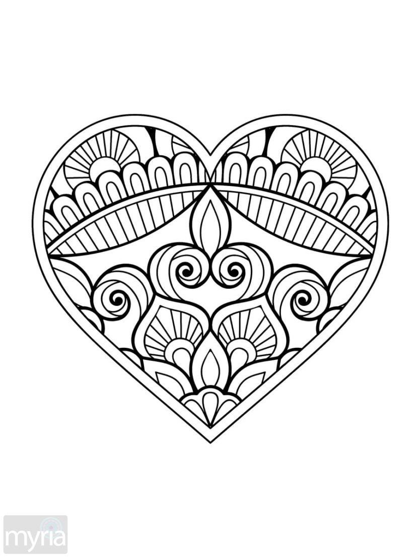 big coloring pages funny big eye owl coloring page  download print online big pages coloring