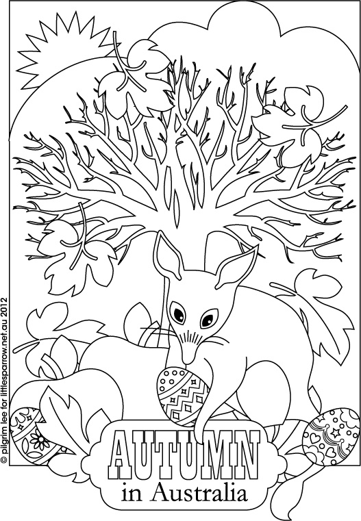 bilby pictures to colour bilby drawing coloring pages print coloring 2019 colour bilby to pictures