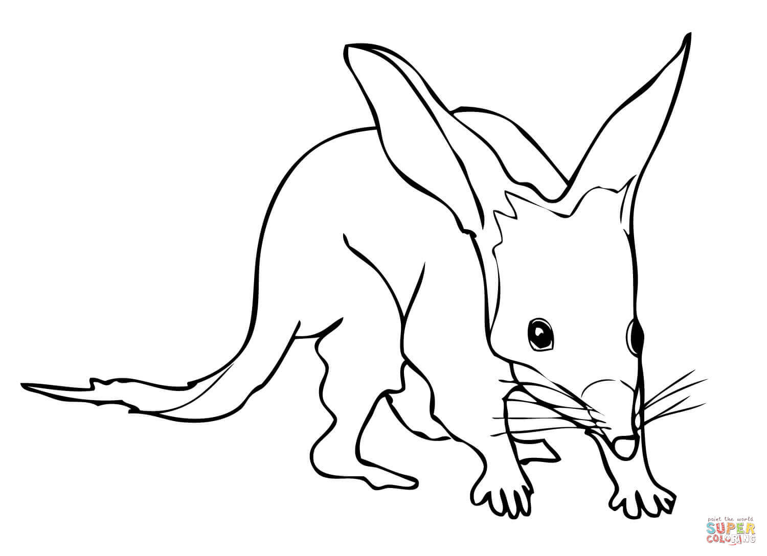 Bilby pictures to colour