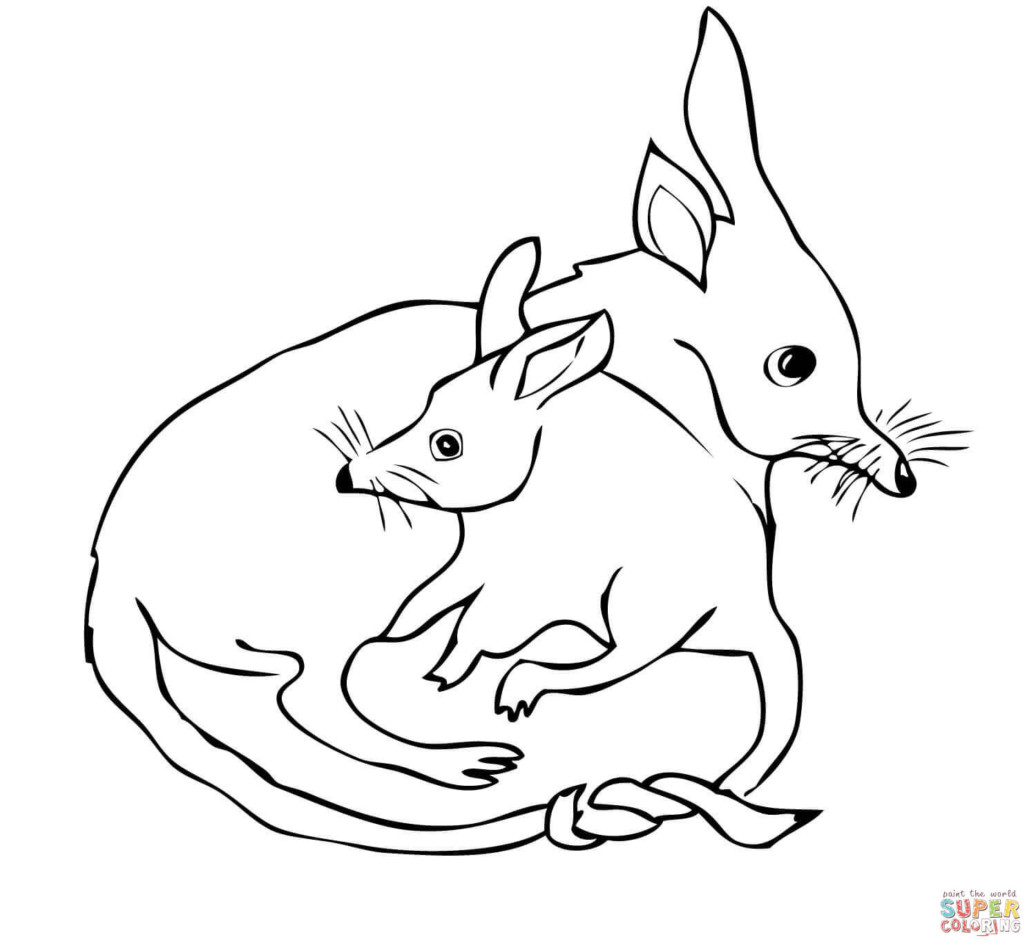 bilby pictures to colour playfulljoy australian easter bilby coloring in page to bilby pictures colour