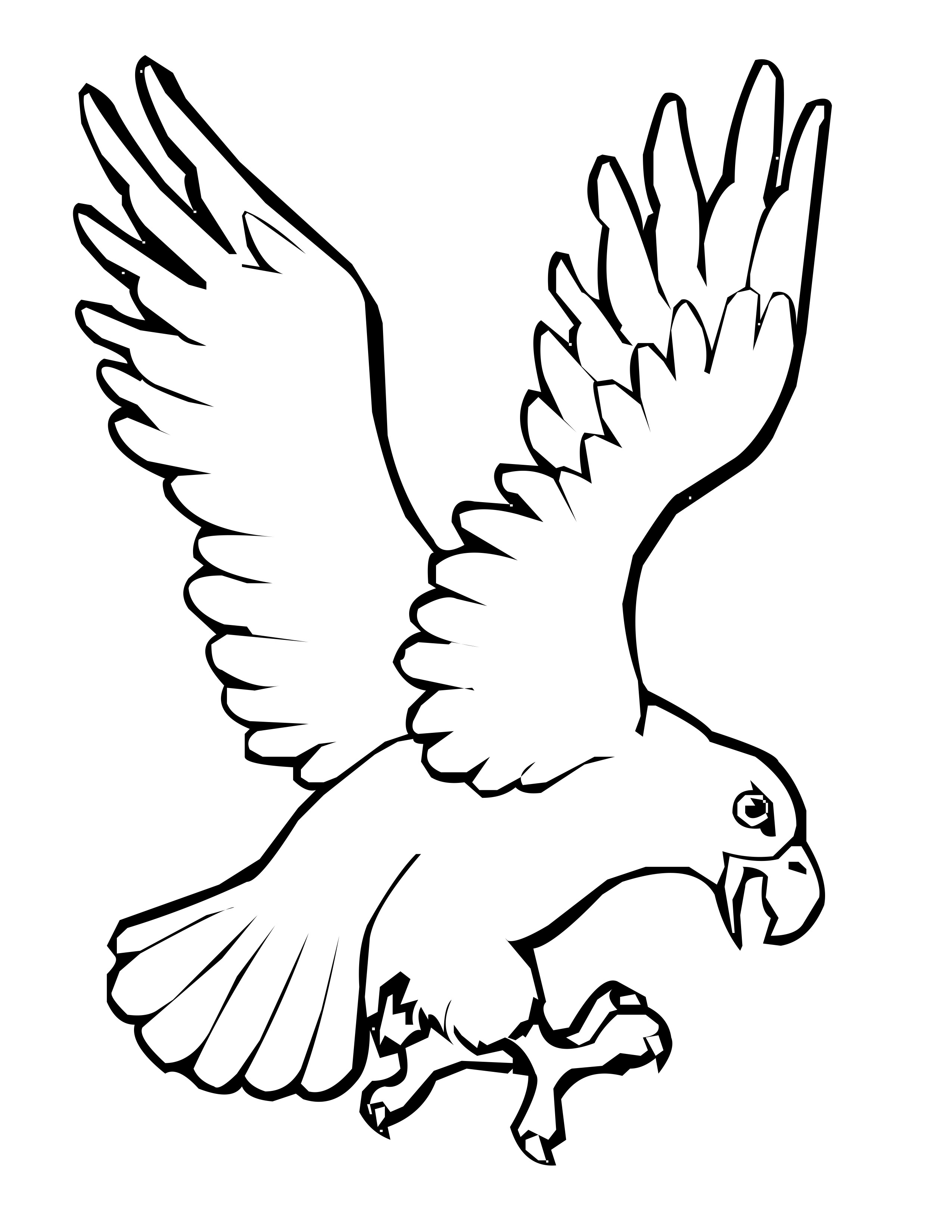 bird color pages baby birds coloring page free printable coloring pages bird pages color