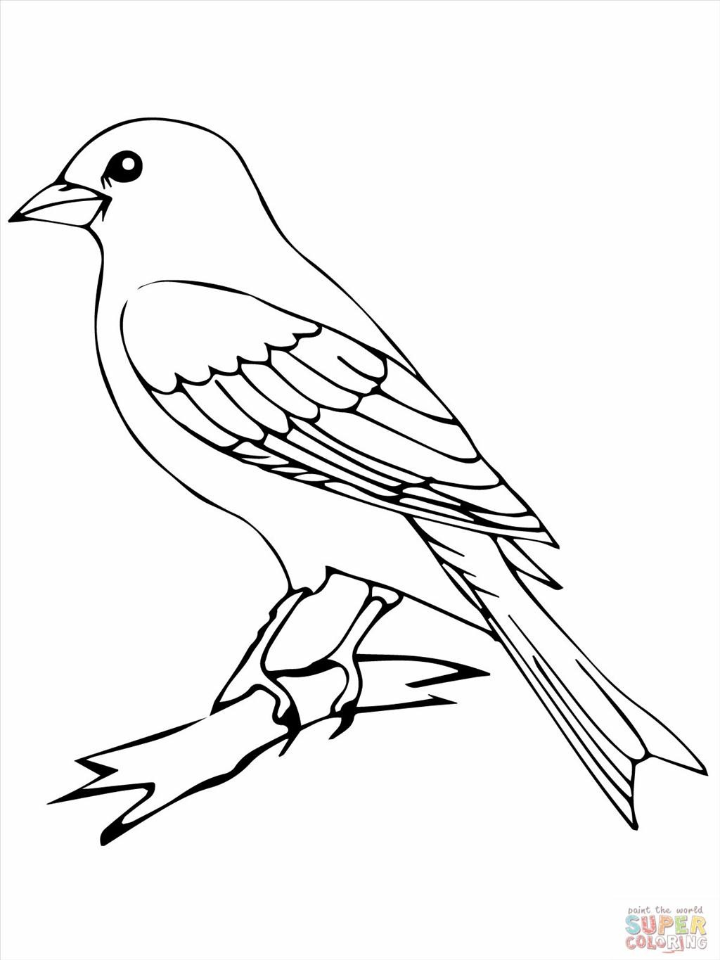 bird outlines bird outline drawing at getdrawings free download outlines bird