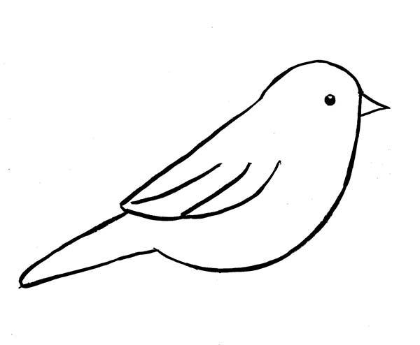 bird outlines bird silhouette outline at getdrawings free download outlines bird