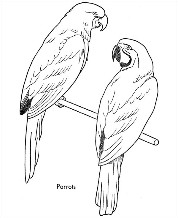 bird printable coloring pages bird coloring pages to download and print for free pages printable coloring bird