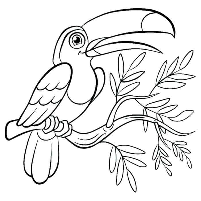 birds to colour and print bird coloring pages printable to birds print and colour