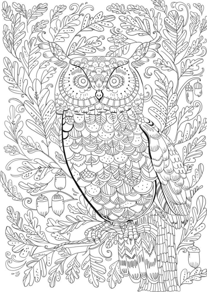 blank coloring sheets get this simple blank coloring pages to print for blank coloring sheets
