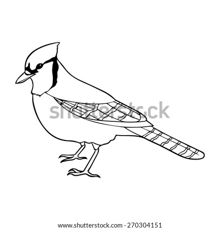 blue jay outline jay stock photos royalty free images vectors shutterstock jay blue outline