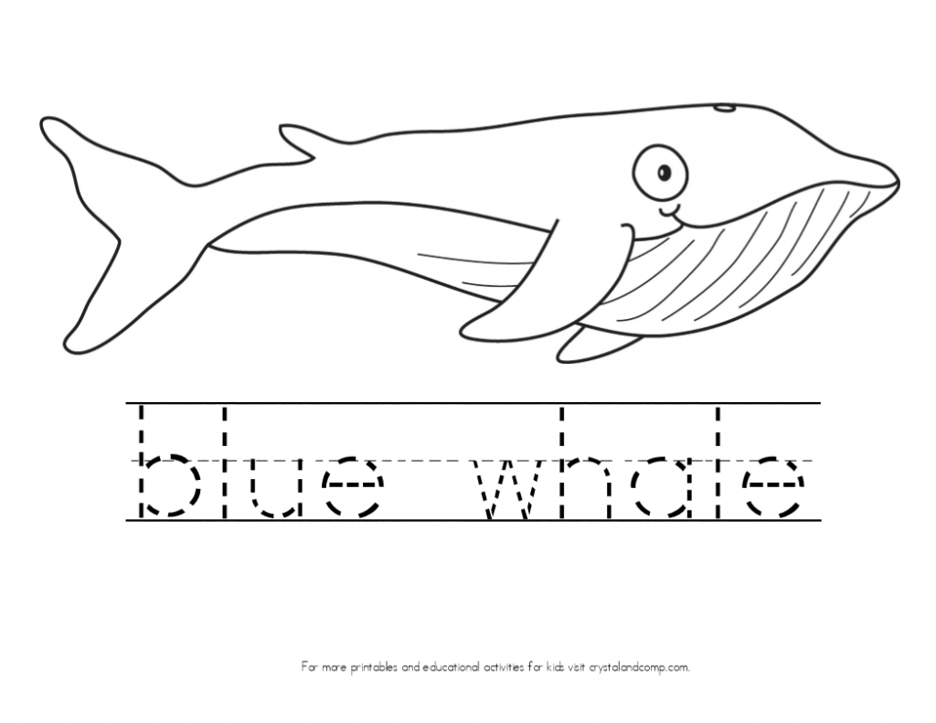 blue whale coloring page big whale coloring page topcoloringpagesnet page blue coloring whale